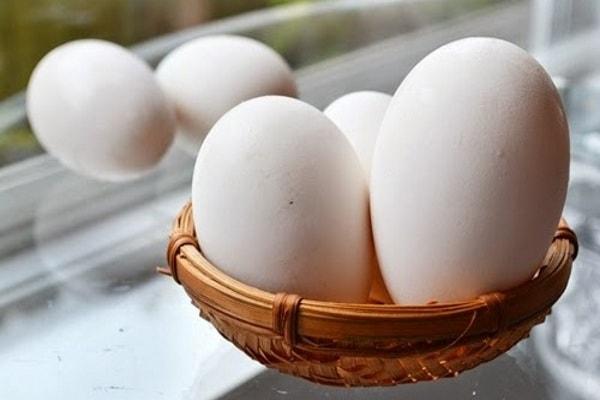 Vì sao phụ nữ mang thai nên ăn trứng ngỗng 1