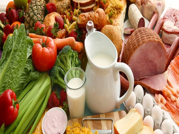 Thực phẩm giàu protein hỗ trợ tốt cho quá trình điều trị bạch cầu tăng cao